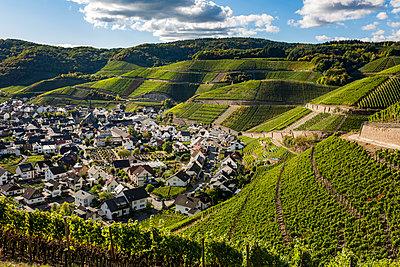 Im Weingebiet - p1271m1539699 von Maurice Kohl