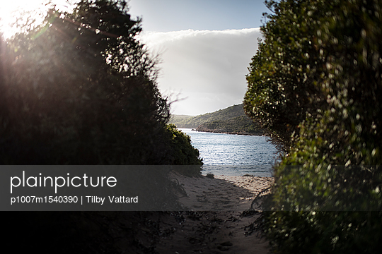 Arriving at the beach - p1007m1540390 by Tilby Vattard