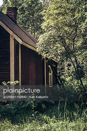 Verwilderter Garten - p1255m1152840 von Kati Kalkamo