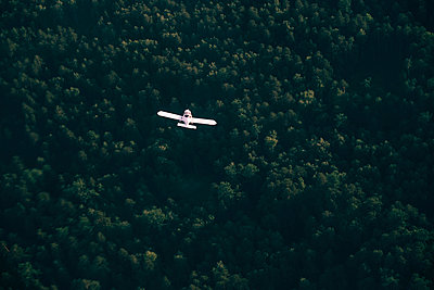 Aerial view of airplane flying over trees - p555m1522967 by Vladimir Serov