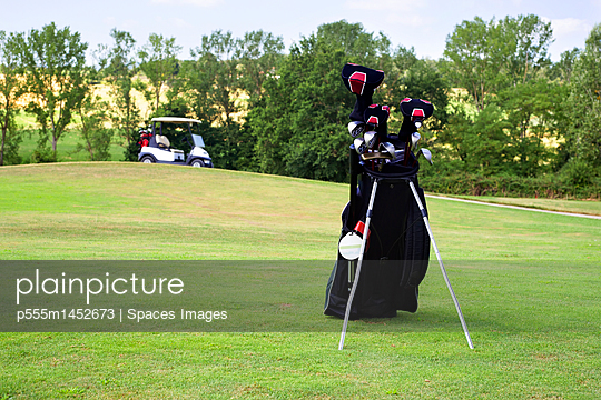 Golf clubs in a bag on the fairway of a golf course