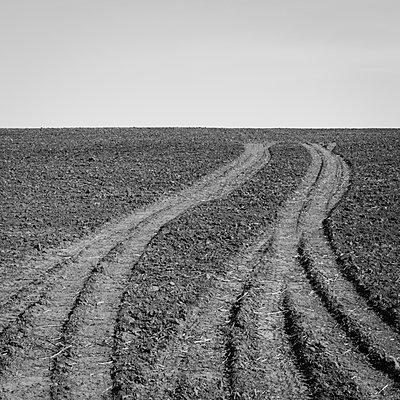 Fresh tire tracks on farmland - p1100m888050f by Paul Edmondson