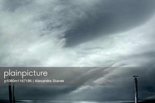 p1080m1167186 von Alexandra Stanek