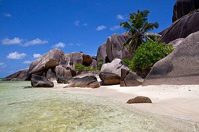 Solitary beach - p0452409 by Jasmin Sander