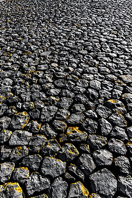 Paving stones - p248m1025375 by BY