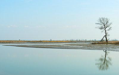 Zuid-Holland - p1132m1008037 by Mischa Keijser