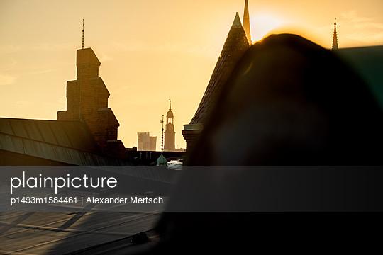 p1493m1584461 by Alexander Mertsch