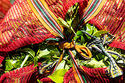 Bag containing freshly picked tea leaves - p590m2090551 by Philippe Dureuil