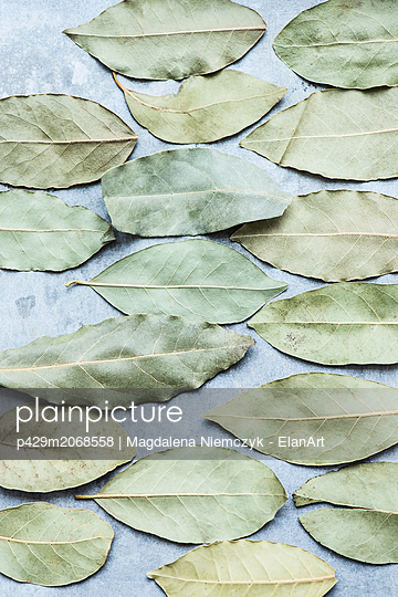 Dry bay leaves - p429m2068558 by Magdalena Niemczyk - ElanArt