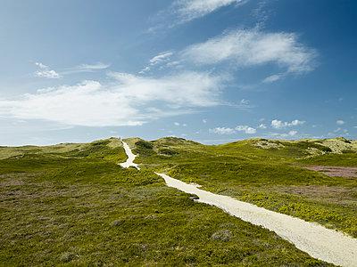 Weg durch die Dünen - p1200m1143666 von Carsten Görling