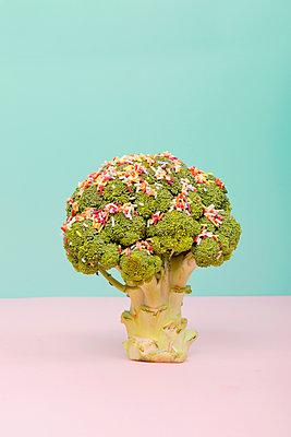Brokkoli-Baum mit Zuckerstreuseln - p451m1589248 von Anja Weber-Decker