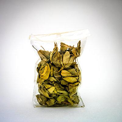 Bay leaves in a plastic bag. - p813m1122823 by B.Jaubert