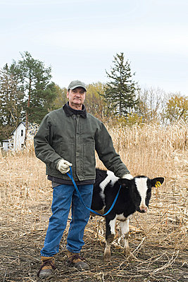 Farmer with calf - p9247129f by Image Source