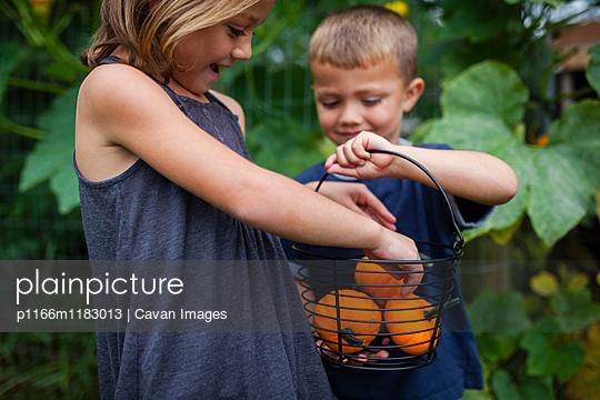 p1166m1183013 von Cavan Images