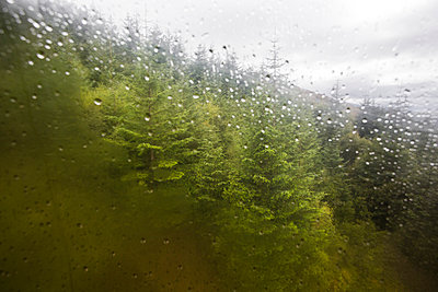 With cable car up to Ben Nevis - p1057m931392 by Stephen Shepherd