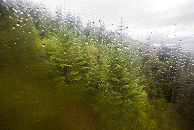 Mit der Bergbahn auf den Ben Nevis - p1057m931392 von Stephen Shepherd