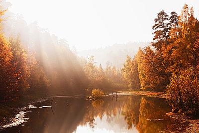 Germany, Rhineland Palatinate,  Ungeheuersee in autumnal  Palatinate Forest at haze - p300m1120787f by Gaby Wojciech