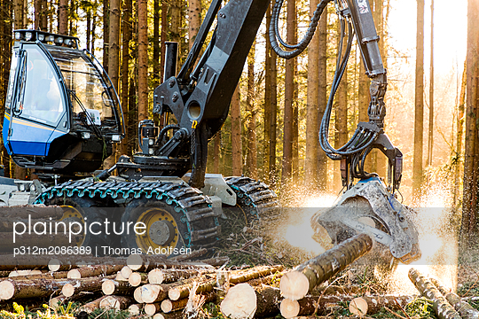 Forest machine at work - p312m2086389 by Thomas Adolfsén