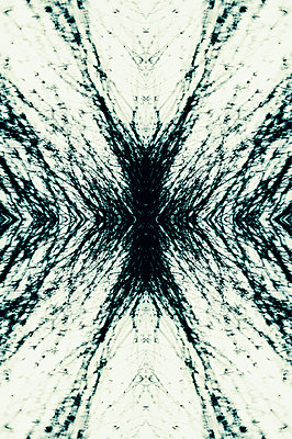 Abstract kaleidoscope pattern of willow tree branches blowing in the wind - p1047m2179268 by Sally Mundy