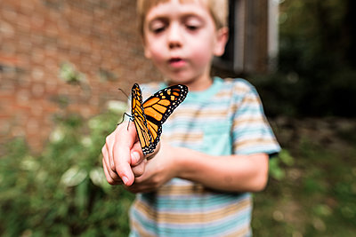 Monarch butterfly sitting on boy's hand as he observes it - p1166m2078308 by Cavan Images