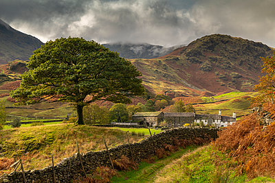 Autumn in the Langdale Valley, Lake District National Park, UNESCO World Heritage Site, Cumbria, England, United Kingdom, Europe - p871m2209508 by Adam Burton