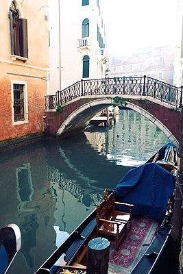 Venice - p597m971237 by Tim Robinson