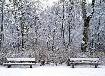 Park im Winter - p2370438 von Thordis Rüggeberg