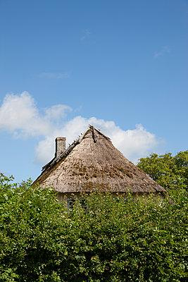 Verstecktes Reetdachhaus - p248m1463005 von BY