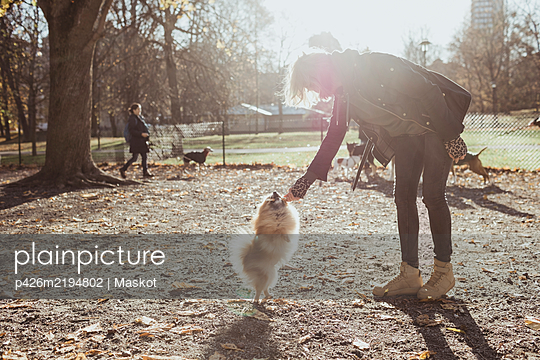 Full length side view of woman playing with Pomeranian dog at park - p426m2194802 by Maskot
