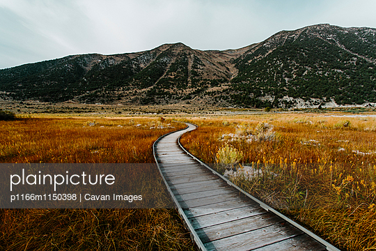 p1166m1150398 von Cavan Images