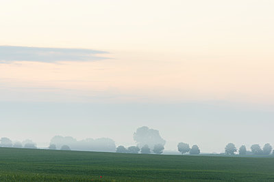 Red sky over landscape with fields - p1273m2031500 by Melanka Helms