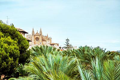 Mallorca - p416m1498051 von Jörg Dickmann Photography