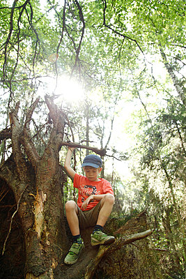 Child sitting on a tree - p249m945152 by Ute Mans