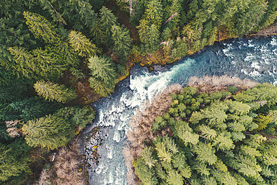 High angle view of river flowing amidst trees in forest - p1166m1417470 by Cavan Images
