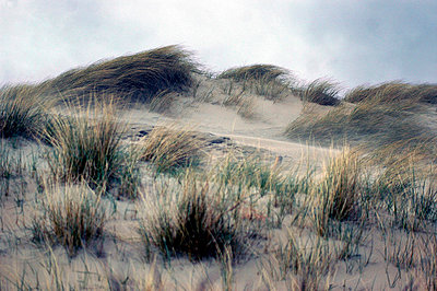 Dunes - p8960417 by JP van der Stouwe