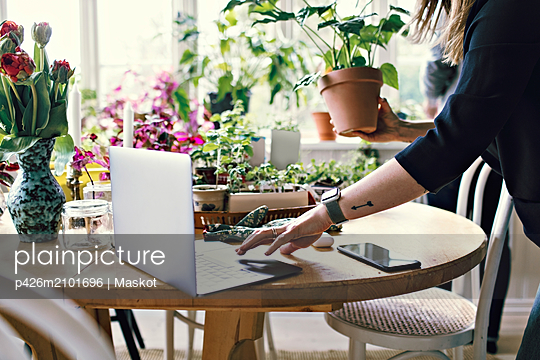 Midsection of woman using laptop while holding potted plant at home - p426m2101696 by Maskot