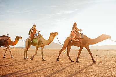Female friends riding on camels at desert against sky during sunny day - p1166m1473789 by Cavan Images
