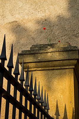 p1199m2007963 by Claudia Jestremski