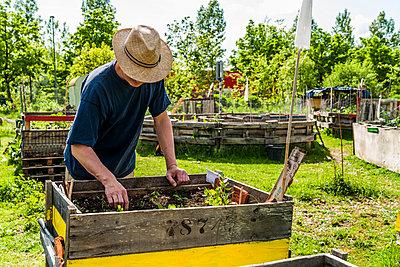 Gardener - p867m1051267 by Thomas Degen