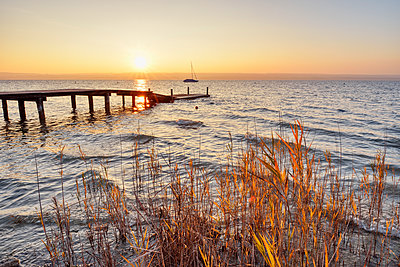 Scenic view of pier over lake Ammersee seen through plants against clear sky during sunset, Germany - p300m2144372 by Martin Rügner