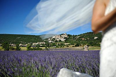 Braut im Lavendelfeld - p1468m1527651 von Philippe Leroux