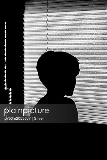 p750m2055537 by Silveri