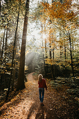 Germany, Black Forest, Sitzenkirch, woman walking in autumnal forest - p300m2059193 by letizia haessig photography