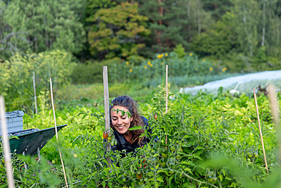 Woman on vegetable patch - p312m2217103 by Christian Ferm