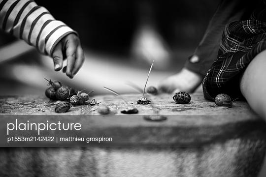 goodbye daisy - p1553m2142422 by matthieu grospiron