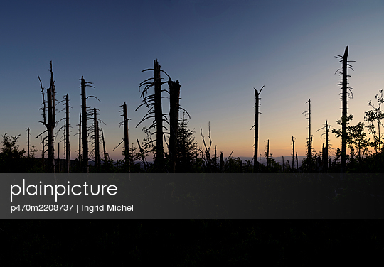 Storm damage - p470m2208737 by Ingrid Michel