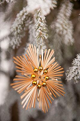 Christmas tree decoration - p533m1039579 by Böhm Monika