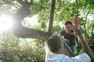 Father giving high five to son on tree during sunny day - p300m2277020 by Gustafsson