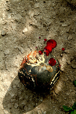 Blutiger Apfel - p3750097 von whatapicture