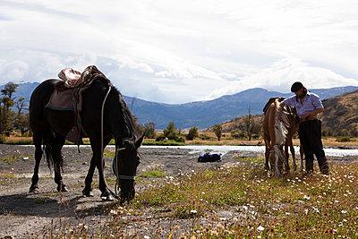 Chile - p842m754619 von Renée Del Missier